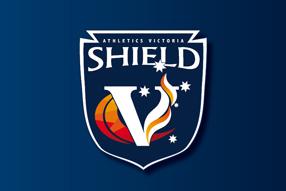 AV_Shield-Small